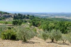 Paysage rural près de Castellina dans le chianti sur la Toscane photographie stock libre de droits