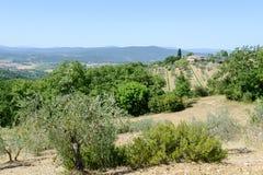 Paysage rural près de Castellina dans le chianti sur la Toscane photo stock