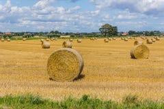 Paysage rural près de Ystad photographie stock libre de droits