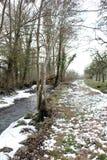 Paysage rural, promenade dans les bois en hiver image libre de droits