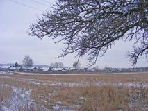 Paysage rural scénique de champ d'hiver et de branche neigeuse avec le vieux village sur le fond images stock