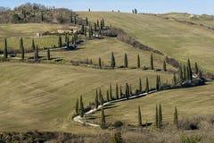 Paysage rural typique de la campagne toscane au sud de Sienne, Italie, avec des cyprès encadrant le chemin de terre photos stock