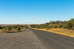 Paysage rural vide d'hiver d'Asphalt Road Running Through Dry photographie stock libre de droits
