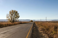 Paysage rural vide d'hiver d'Asphalt Road Running Through Dry photos libres de droits
