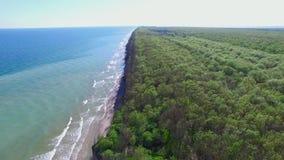 Paysage séparant le littoral entre la mer et le fond de forêt banque de vidéos