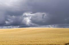 Paysage saisonnier Photos libres de droits