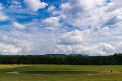 Paysage scénique d'Elkton, la Virginie autour du ressortissant de Shenandoah images libres de droits