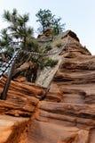 Paysage scénique de la montagne d'atterrissage du ` s d'ange, Etats-Unis Image libre de droits