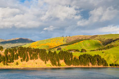 Paysage scénique de littoral de région du Nouvelle-Zélande Otago Photographie stock