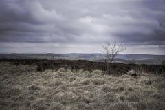 Paysage scénique de parc national de secteur maximal, Derbyshire, R-U images libres de droits