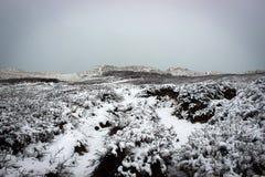 Paysage scénique près de phare de Rubjerg Knude par l'hiver, Danemark Photo stock