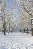 Paysage scandinave dans la neige photos libres de droits
