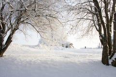 Paysage scandinave dans la neige photographie stock libre de droits