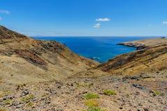 Paysage sec de désert avec les paumes et la montagne et l'océan à l'arrière-plan sur la Madère Photo stock