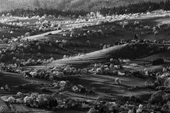 Paysage slovaque de ressort avec des cerisiers photographie stock libre de droits