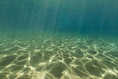 Paysage sous-marin de la Mer Rouge Images stock