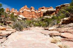 Paysage stérile de désert dans le sud-ouest américain Image libre de droits