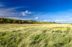 Paysage sur l'île de Sylt photos libres de droits