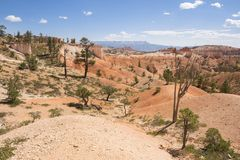 Paysage sur le canyon de bryce photo stock