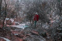 Paysage surréaliste des arbres et de la rivière avec des couleurs désaturées modifiées et homme habillé dans la veste et le chape image libre de droits