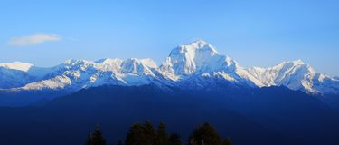 Paysage tôt de l'Himalaya de ressort photo libre de droits