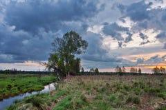Paysage tôt de ressort avec la rivière Images libres de droits