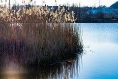 Paysage tôt de ressort, dans la région de Rostov dans la ville de Shakhty, sur la rivière de Grushevka Coucher du soleil ensoleil photos libres de droits
