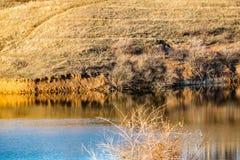 Paysage tôt de ressort, dans la région de Rostov dans la ville de Shakhty, sur la rivière de Grushevka Coucher du soleil ensoleil image libre de droits