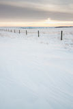 Paysage texturisé de neige Images libres de droits