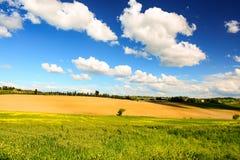 Paysage toscan typique au printemps avec des collines près de Sienne photographie stock libre de droits