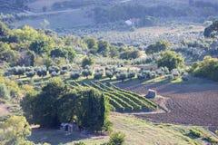 Paysage Toscane de coucher du soleil Images libres de droits