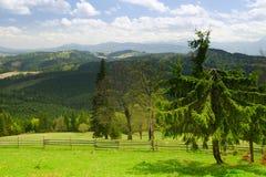 Paysage traditionnel de montagne carpathien photo libre de droits