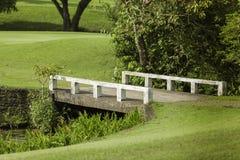 Paysage tropical avec la route et le pont Photographie stock