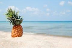 Paysage tropical d'été avec l'ananas sur la plage blanche de sable sur le fond de la mer bleue Photo stock