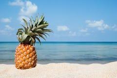 Paysage tropical d'été avec l'ananas sur la plage blanche de sable sur le fond de la mer bleue et le ciel un jour ensoleillé Photos stock