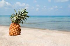 Paysage tropical d'été avec l'ananas sur la plage blanche de sable sur le fond de la mer et du ciel bleus Photos stock