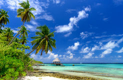 Paysage tropical de plage Photo stock