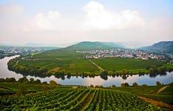 Paysage typique des vignobles de la Moselle près de Trittenheim images libres de droits