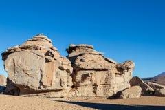Paysage unique du désert de Siloli avec la pierre Tree Arbol de Piedra dans la vallée des roches, Bolivie image libre de droits