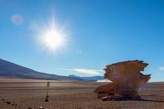Paysage unique du désert de Siloli avec la pierre Tree Arbol de Piedra dans la vallée des roches, Bolivie photographie stock libre de droits