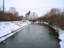 Paysage urbain de l'hiver Rivière et canards yekaterinburg décembre Image libre de droits