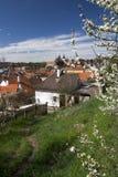 Paysage urbain de ressort avec les bâtiments ruraux Image libre de droits