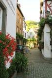 Paysage urbain de village Beilstein images stock