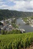 Paysage urbain de vue élevée de Cochem du château avec la rivière de la Moselle Photos stock