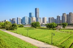 Paysage urbain et horizon de Fuzhou, vus du champ vert en parc images libres de droits
