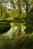 Paysage vert Photo libre de droits