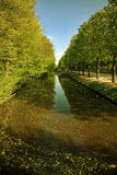 Paysage vert Images stock