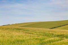 Paysage vert du Sussex images libres de droits