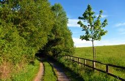 Paysage vert près de château de Kokorin photo stock
