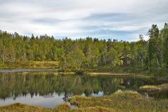 Paysage vert scénique de la Norvège pendant l'heure d'été photos libres de droits